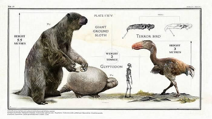 Ancient Giant Animals