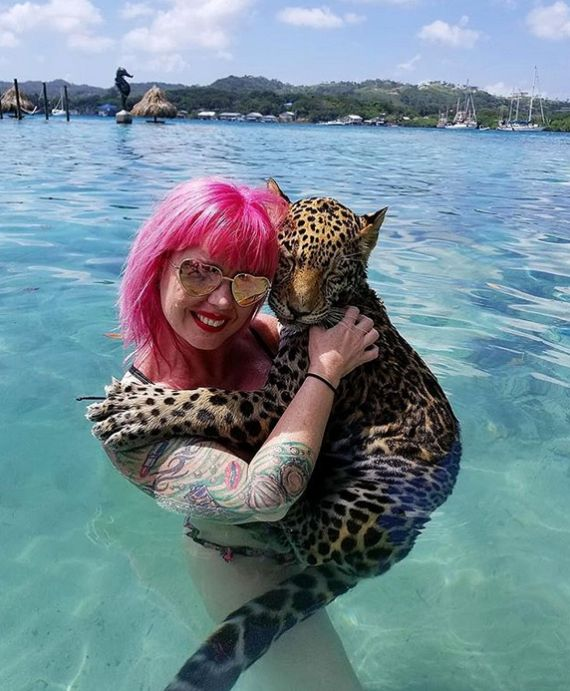 Vacation With Jaguars