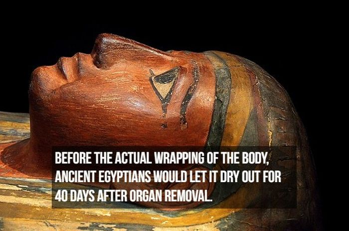 Interesting Facts About Mummies