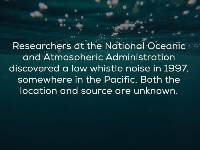 Bizarre Deep Sea Anomalies That Can't Be Explained