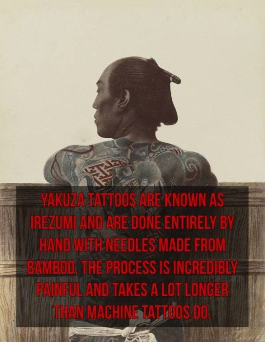 Interesting Facts About The Japanese Yakuza