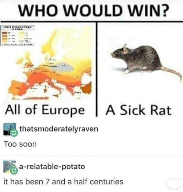 Funny Memes, part 15