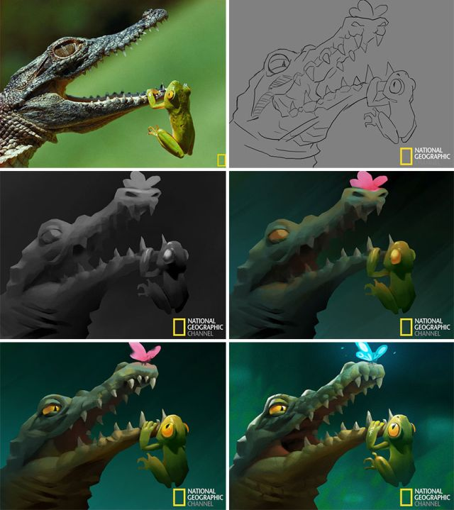 National Geographic Pictures Turned Into Illustrations