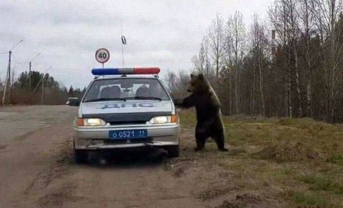 Welcome To Russia, part 7