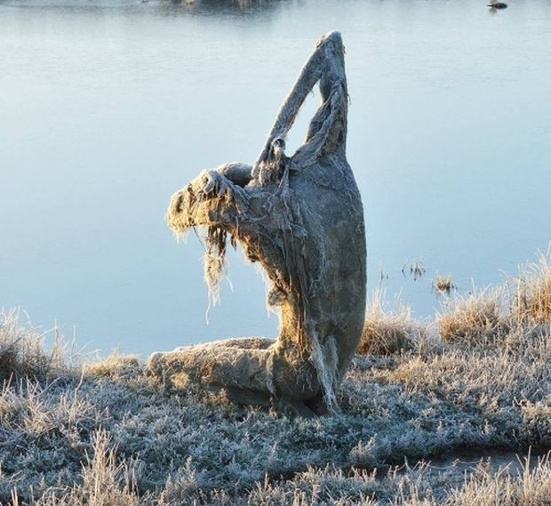 Sculptures In Nature
