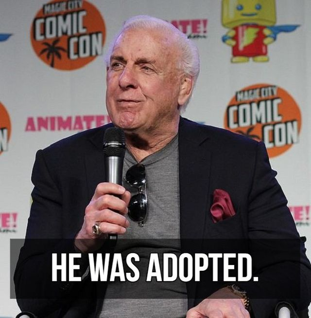 Facts About Ric Flair