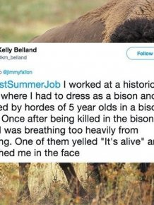 Bad Experiences From Summer Jobs
