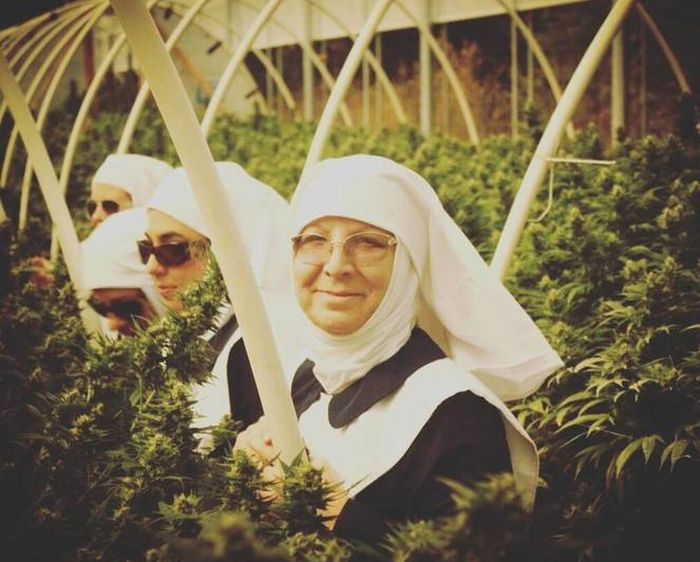 The Sisters Of The Valley Make All Their CBD Products By Moon Cycle