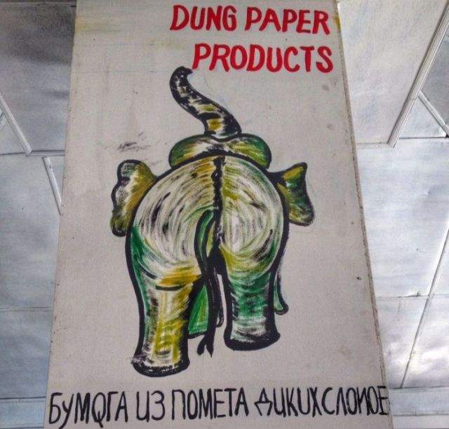 Paper From The Litter Of Wild Elephants