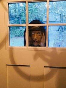Rude Neighbors