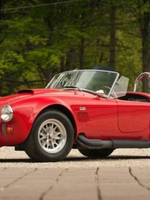 A Bear Attacked A Vintage Sports Car