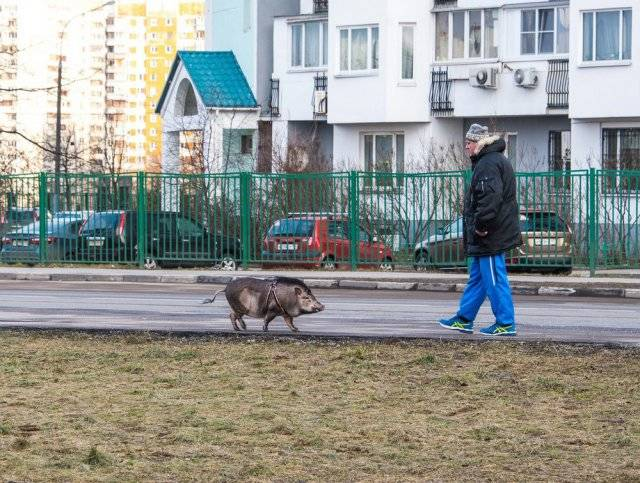 Only In Russia, part 31