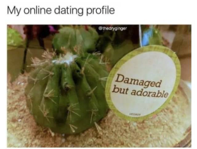 When Your Love Life Is Dead
