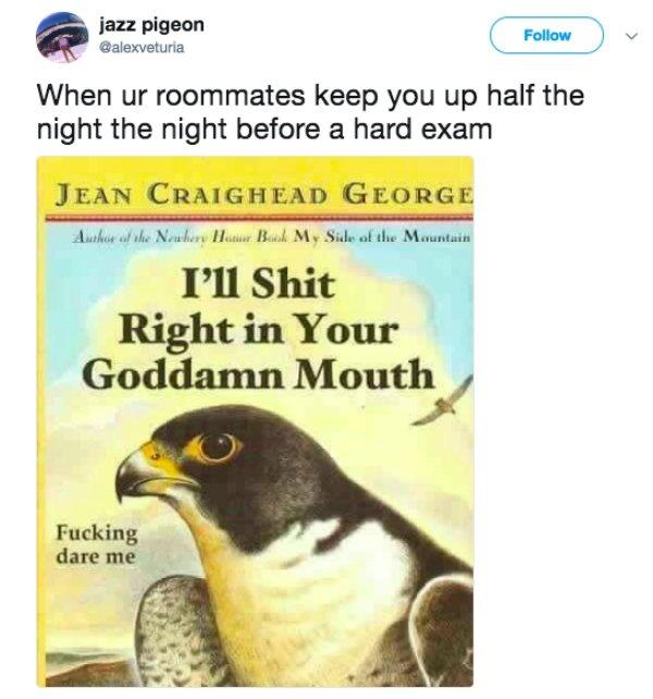 Bad Roommates