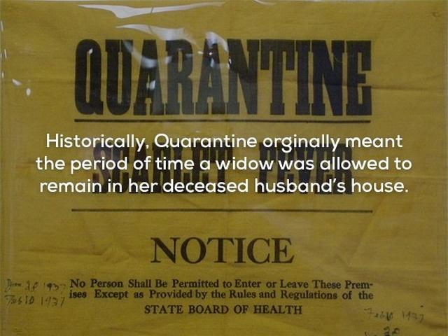 Disturbing Facts, part 2