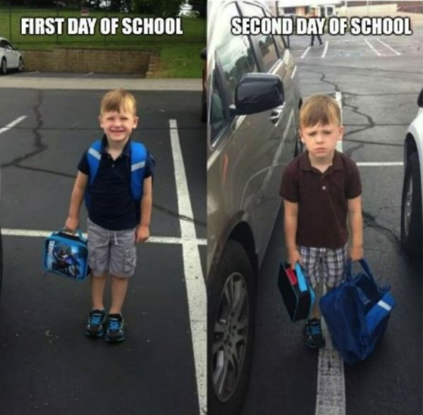 Back-to-school Memes
