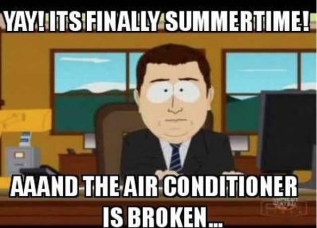Summer Memes