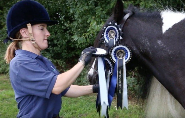 Rescued Foal Four Years Later Wins National Competition