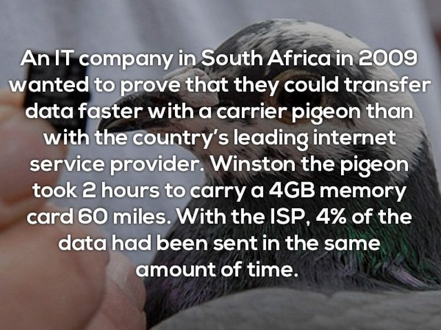 Interesting Facts, part 33