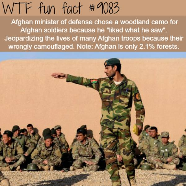 Interesting Facts, part 34