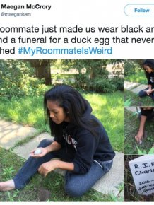 Weird Things Roommates Have Done