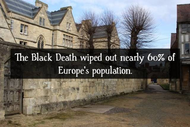 Facts About The Black Death