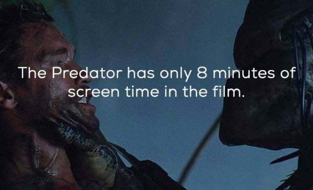 """Facts About The Original """"Predator"""""""