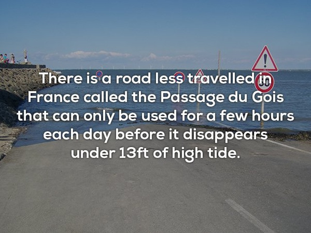 Interesting Facts, part 36