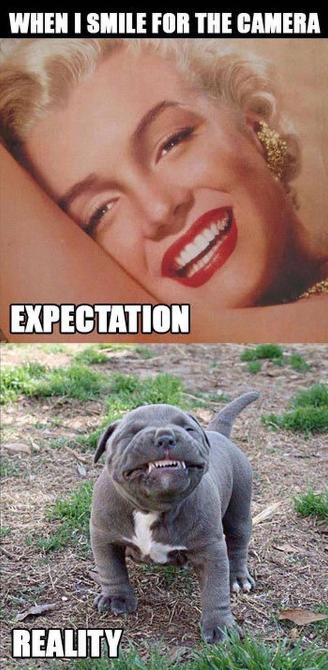 Expectation Vs Reality, part 5