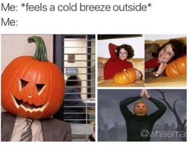 Chilly Memes About The Fall Season