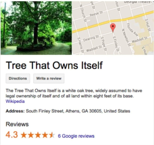 Tree That Legally Owns Itself