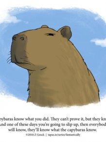 Interesting Animal Facts