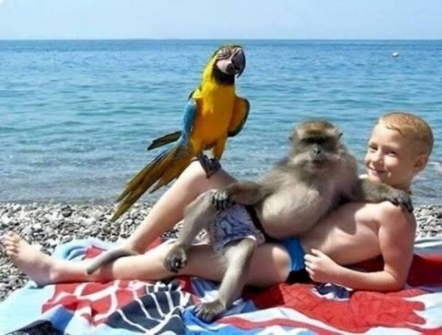 Funny Vacation Photos