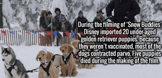 Interesting Facts, part 38