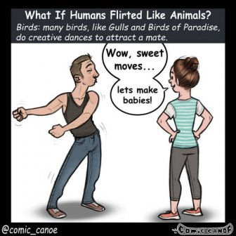 What If We Flirted Like Animals