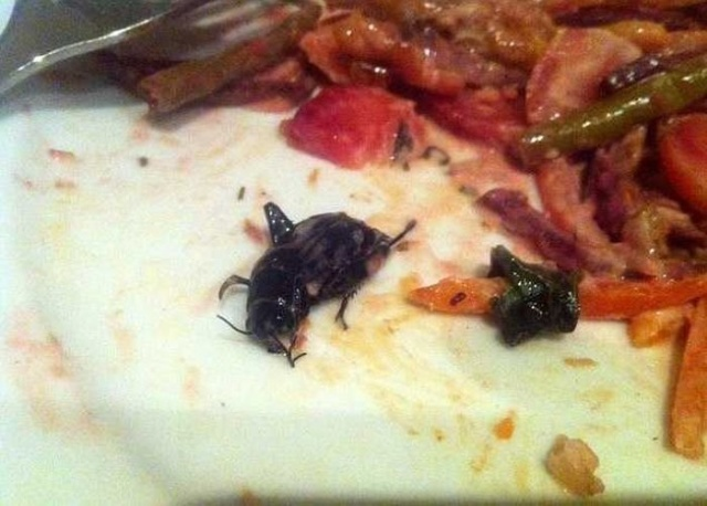 Food Horror