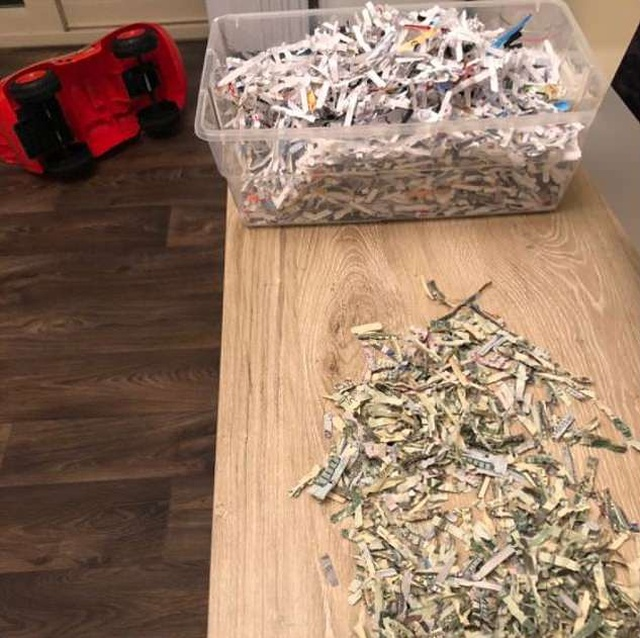 Two-year-old Shred $1,060 That His Parents Were Saving For College Football Season Tickets
