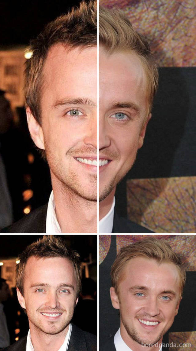 Celebrities And Their Doppelgangers