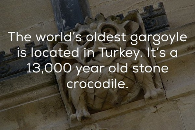 Facts About Stone Monsters Perched On Old Buildings