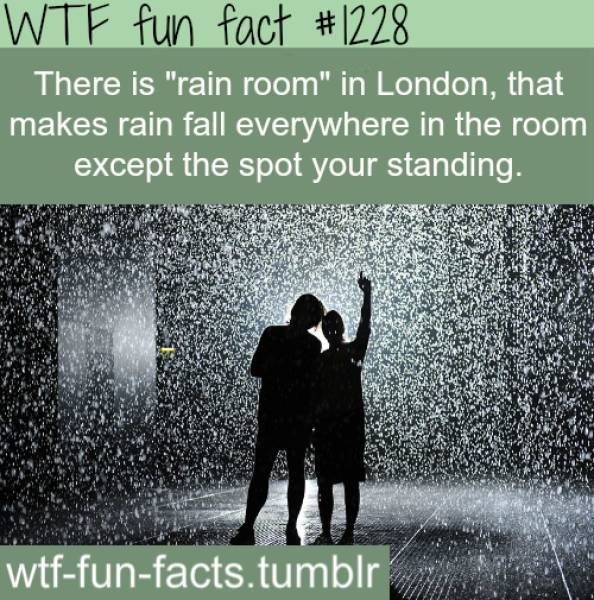 Collection Of Interesting Facts, part 2