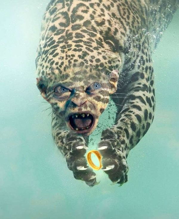 Fishing Leopard Photoshop Battle