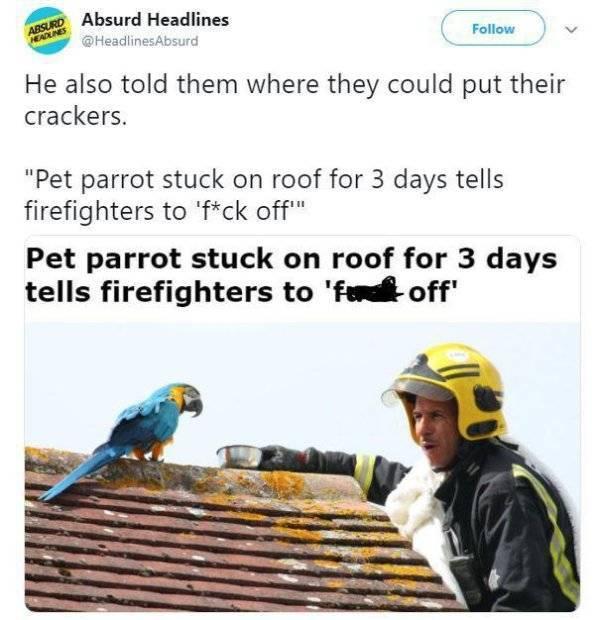 Unbelievable But Real Headlines