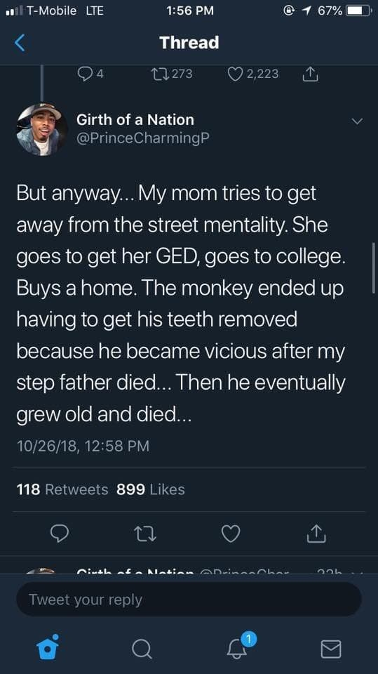 Crazy Story About Gangsters, Monkeys, and Murder
