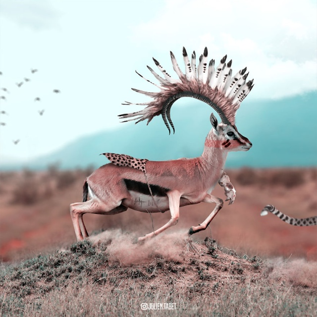 Fantasy Animals