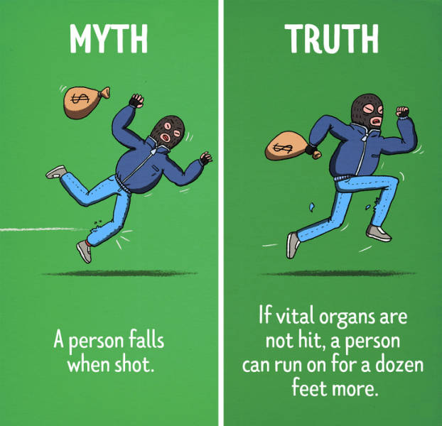 Hollywood Myths Vs Reality