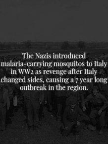 Creepy Facts