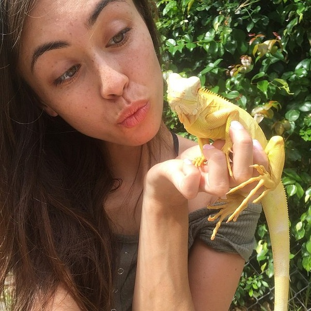 Girl And Reptiles