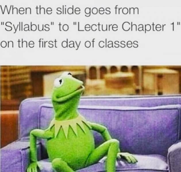 Student Memes