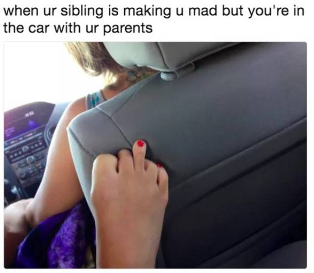 Memes About Siblings