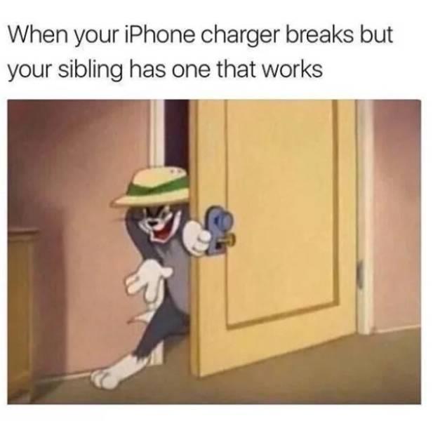 Memes About Siblings